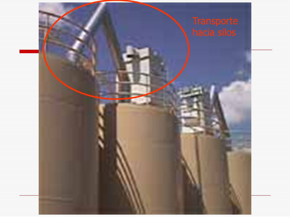 Transporte hacia silos