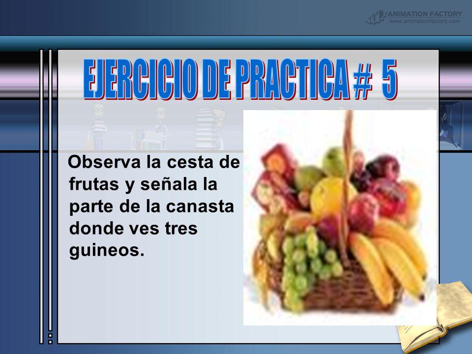 EJERCICIO DE PRACTICA # 5