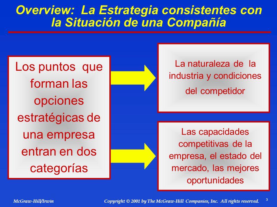 Overview: La Estrategia consistentes con la Situación de una Compañía