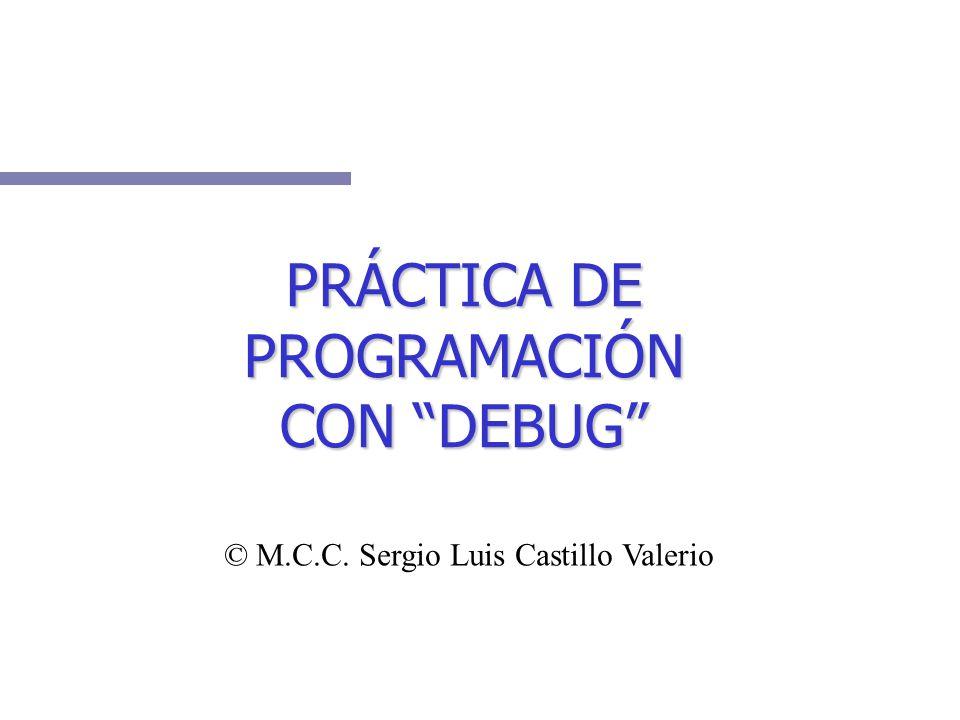 PRÁCTICA DE PROGRAMACIÓN CON DEBUG