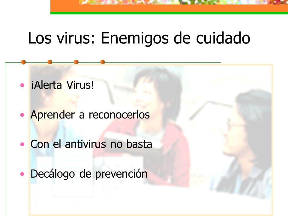 Los virus: Enemigos de cuidado
