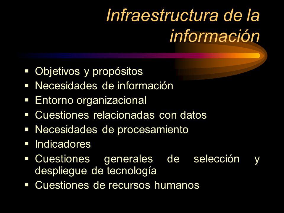 Infraestructura de la información