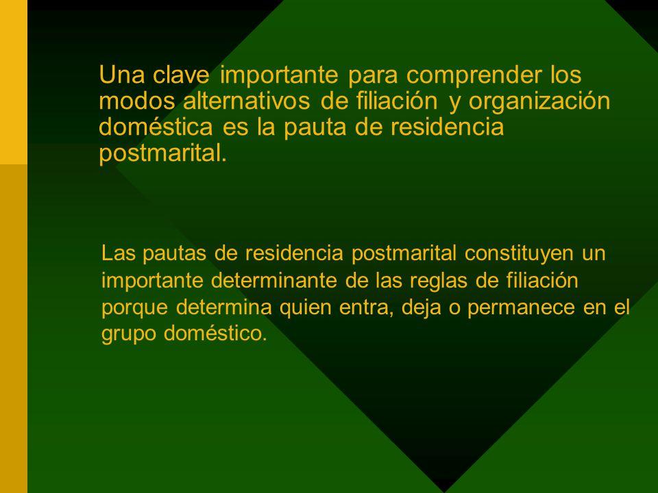 Una clave importante para comprender los modos alternativos de filiación y organización doméstica es la pauta de residencia postmarital.