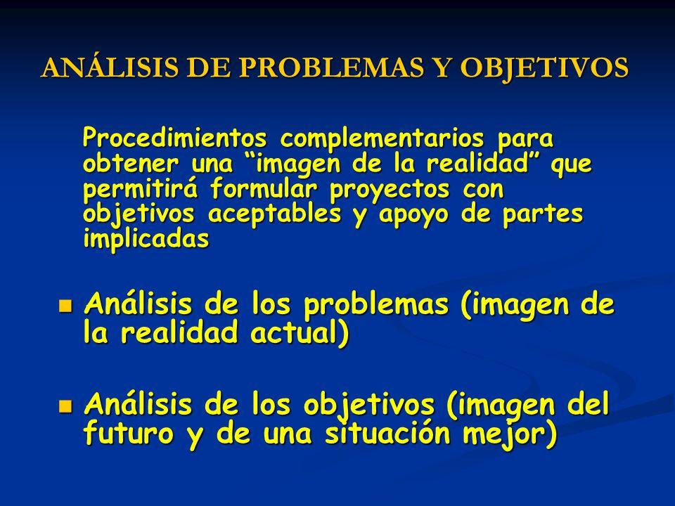 ANÁLISIS DE PROBLEMAS Y OBJETIVOS