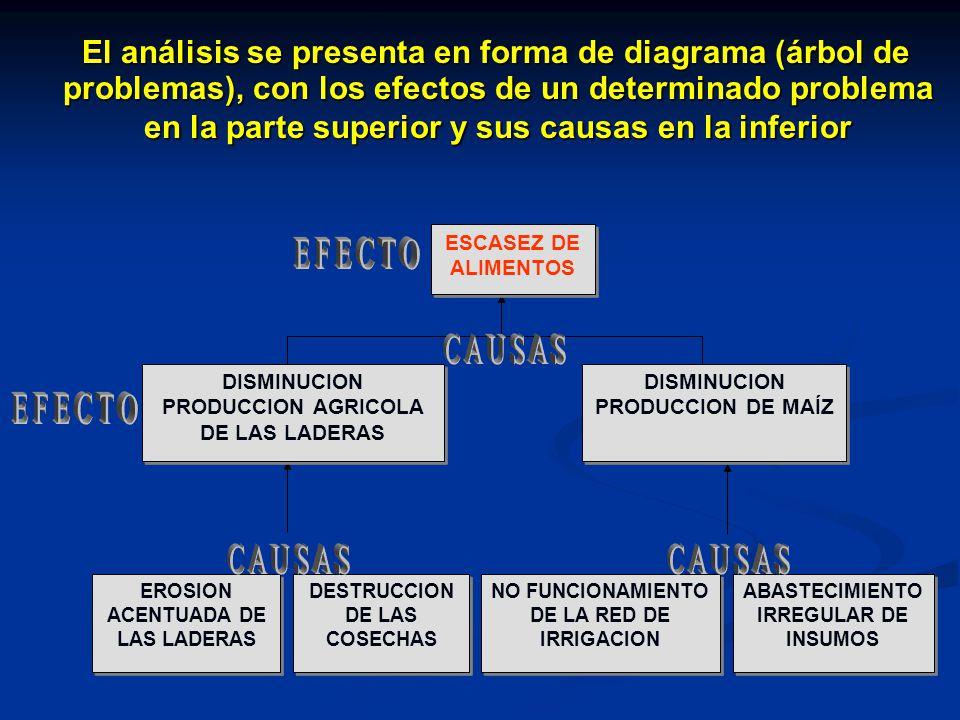 El análisis se presenta en forma de diagrama (árbol de problemas), con los efectos de un determinado problema en la parte superior y sus causas en la inferior