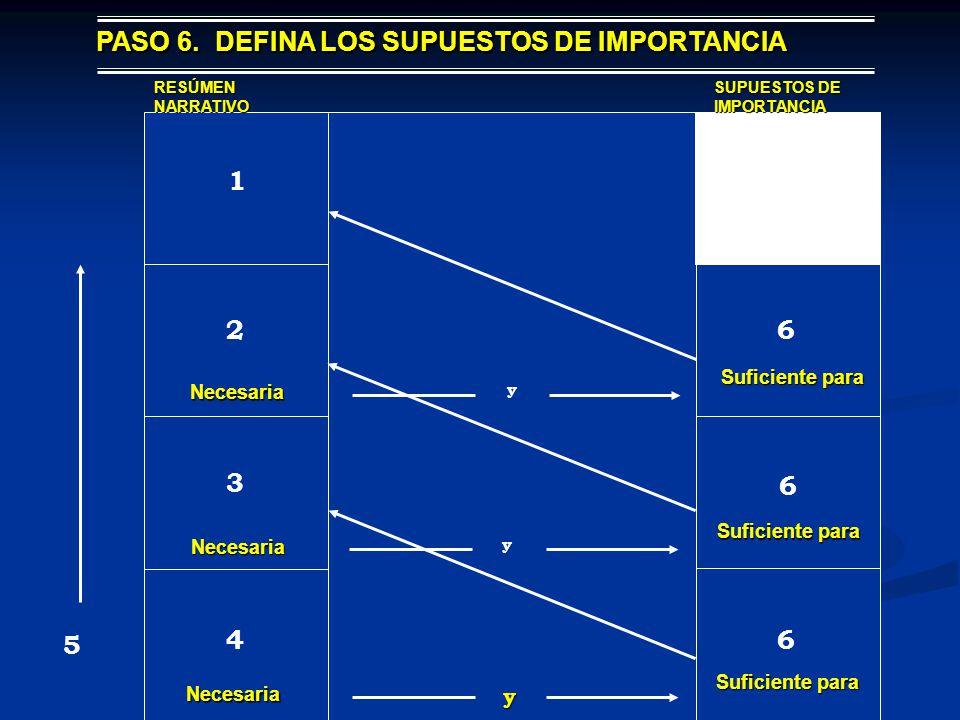 PASO 6. DEFINA LOS SUPUESTOS DE IMPORTANCIA