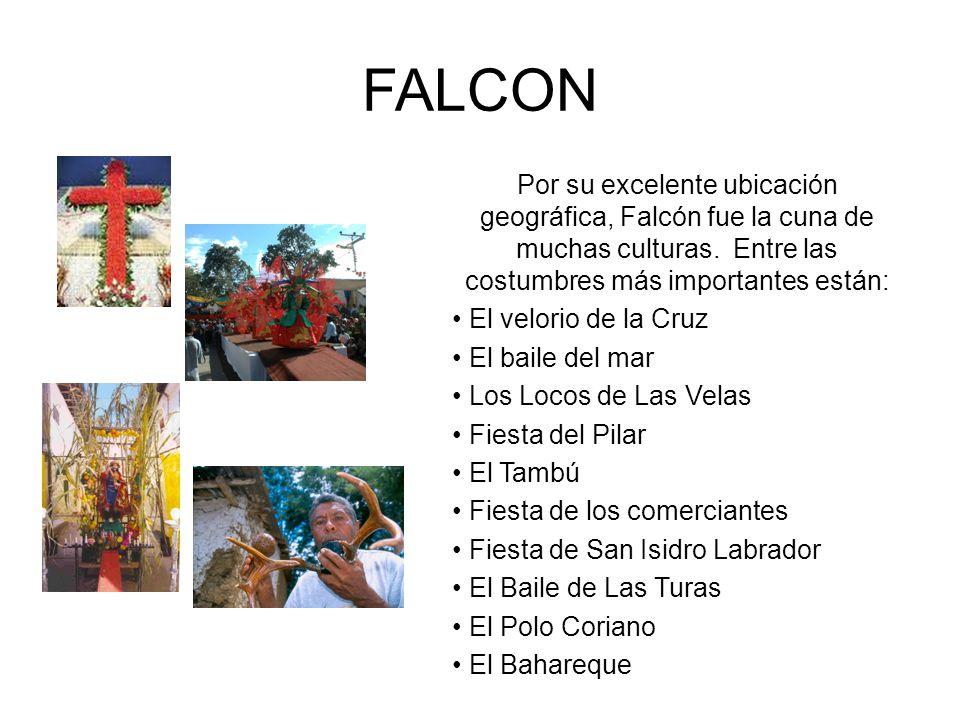 FALCON Por su excelente ubicación geográfica, Falcón fue la cuna de muchas culturas. Entre las costumbres más importantes están: