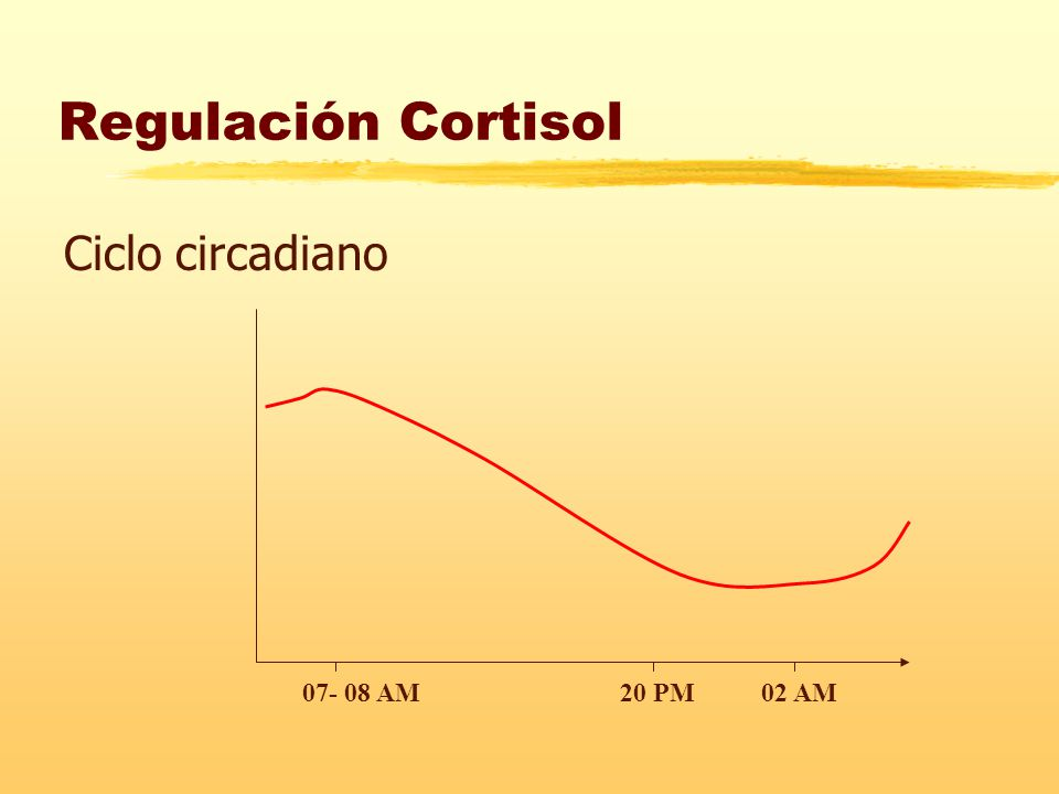 Regulación Cortisol Ciclo circadiano 07- 08 AM 20 PM 02 AM