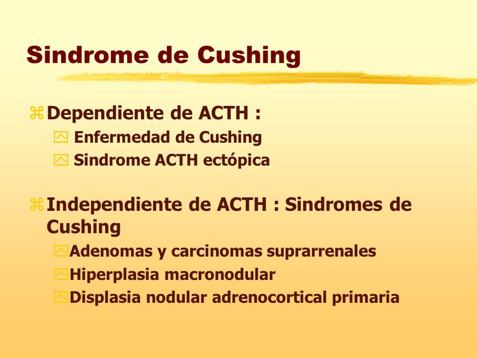 Sindrome de Cushing Dependiente de ACTH :