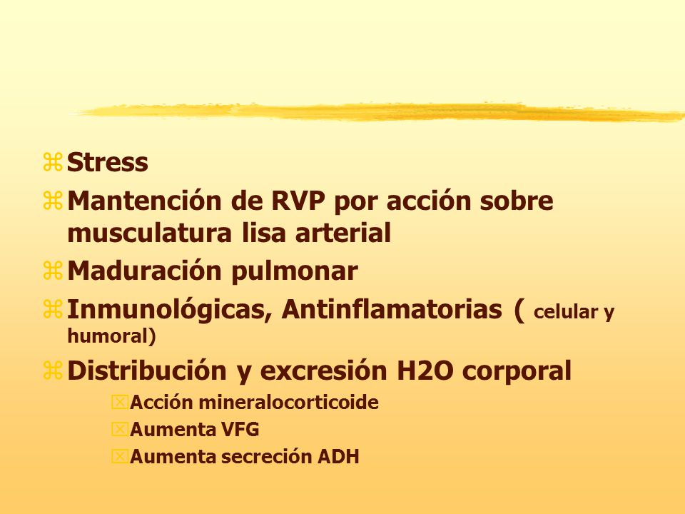 Mantención de RVP por acción sobre musculatura lisa arterial