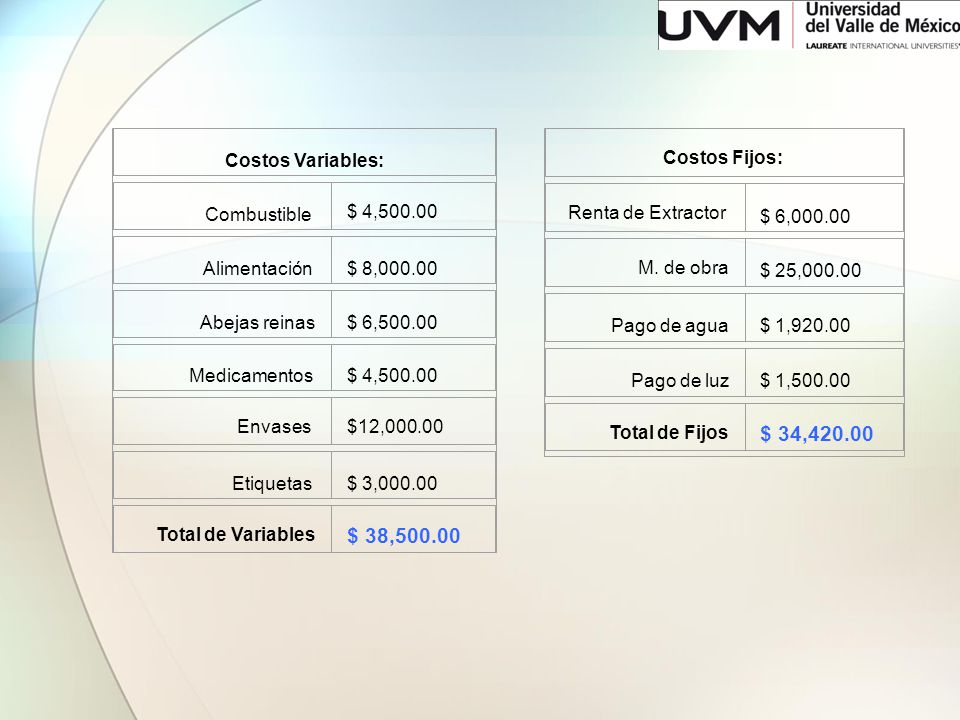 $ 34,420.00 $ 38,500.00 Costos Variables: Combustible $ 4,500.00