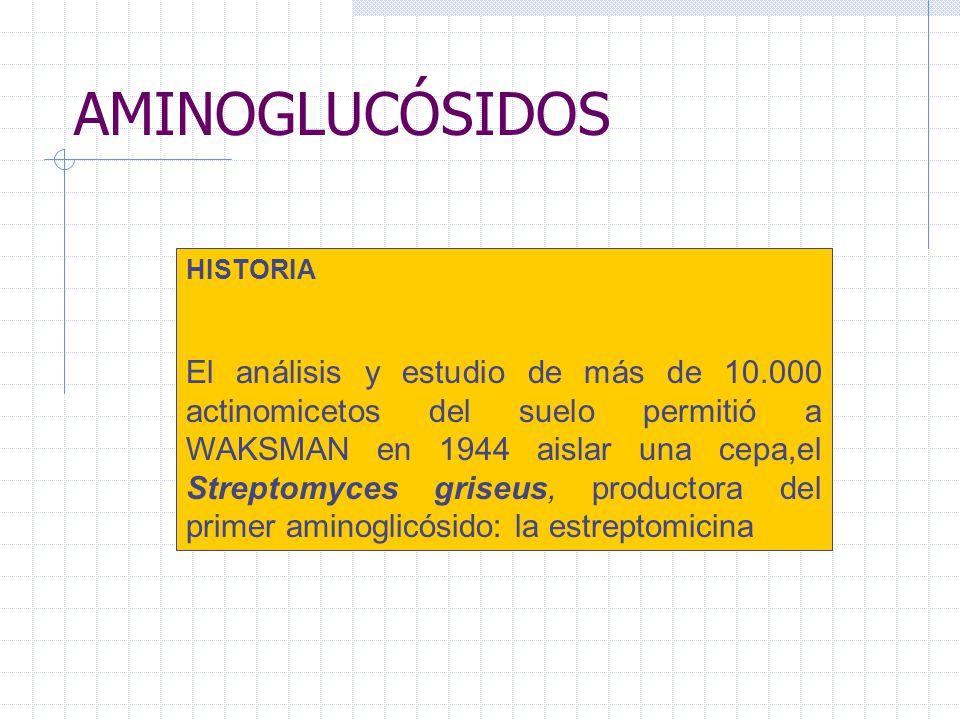 AMINOGLUCÓSIDOS HISTORIA.