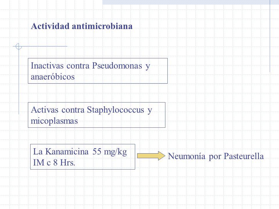 Actividad antimicrobiana