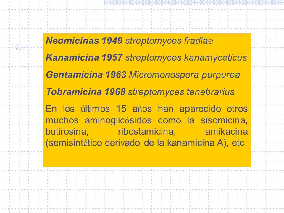 Neomicinas 1949 streptomyces fradiae