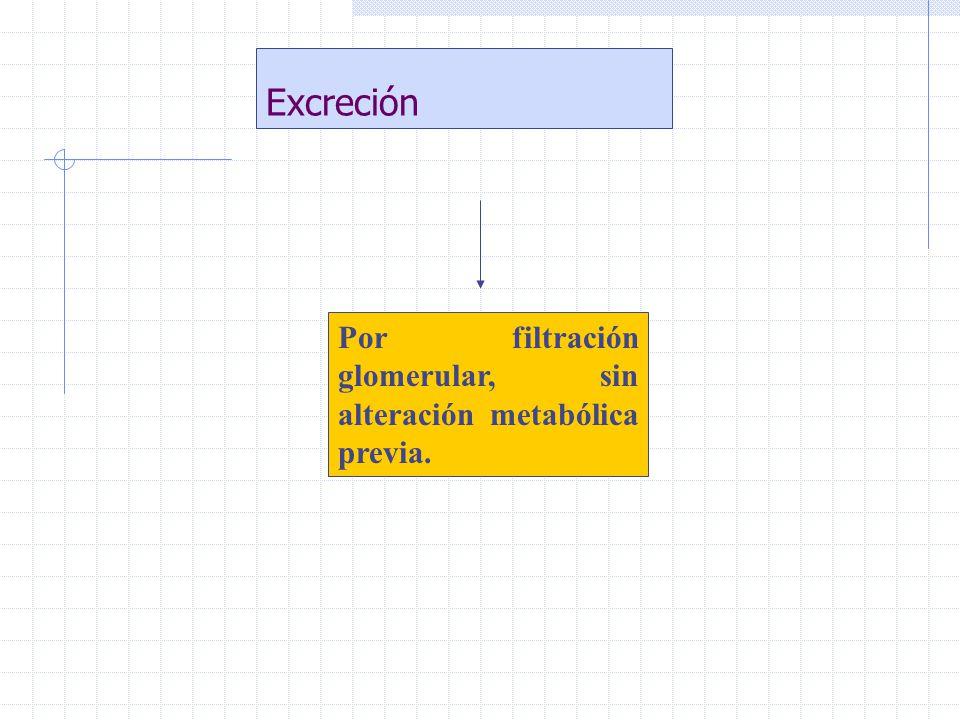 Excreción Por filtración glomerular, sin alteración metabólica previa.