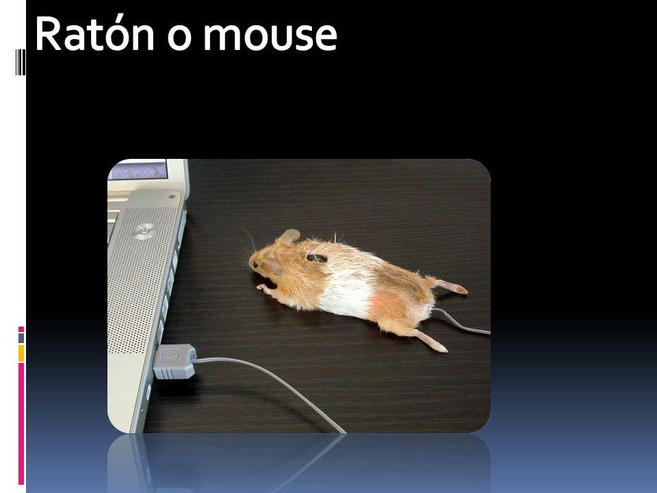 Ratón o mouse