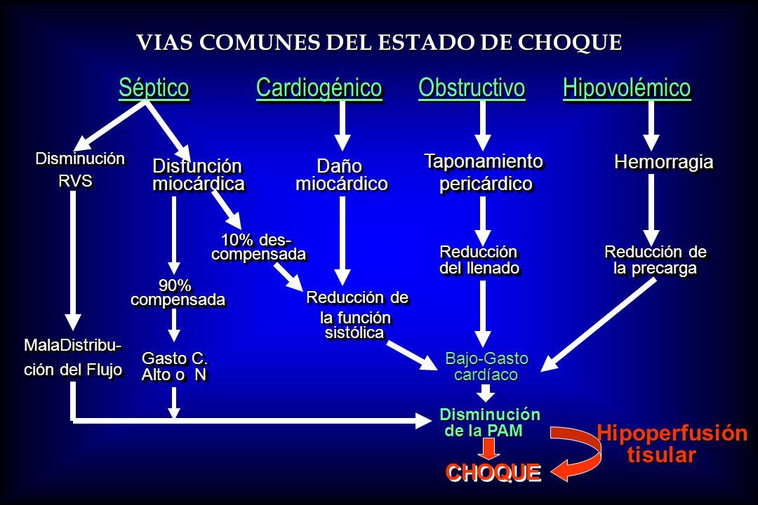 VIAS COMUNES DEL ESTADO DE CHOQUE