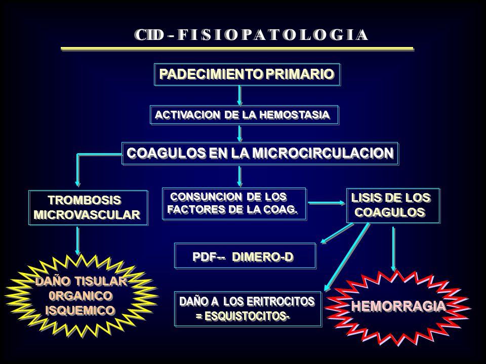 CID - F I S I O P A T O L O G I A PDF-- DIMERO-D PADECIMIENTO PRIMARIO