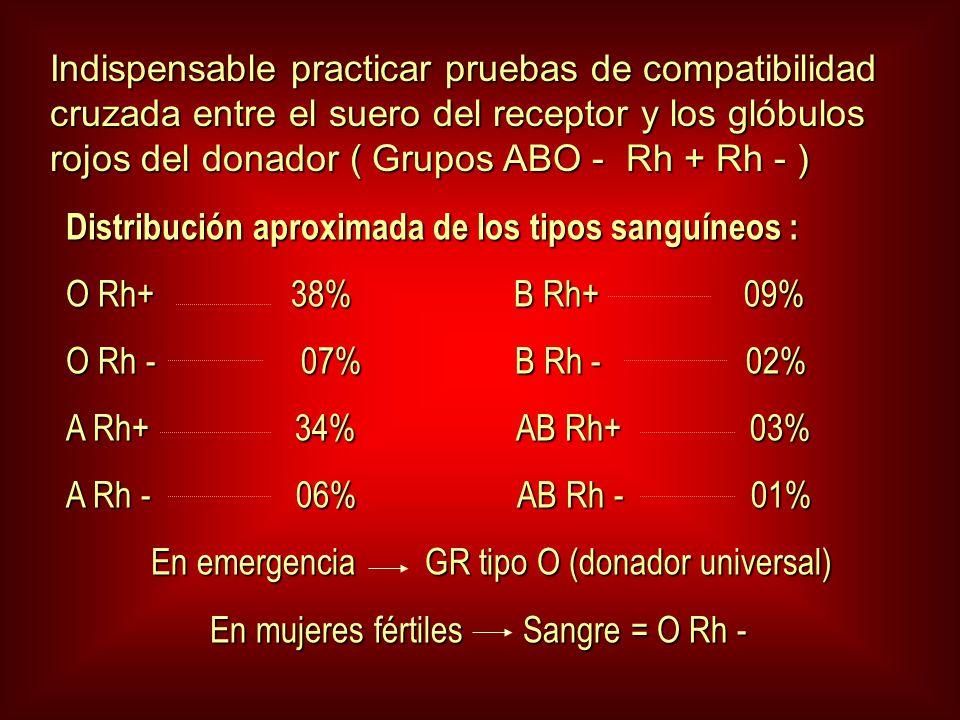 Indispensable practicar pruebas de compatibilidad cruzada entre el suero del receptor y los glóbulos rojos del donador ( Grupos ABO - Rh + Rh - )