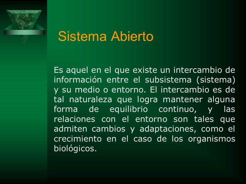 Sistema Abierto