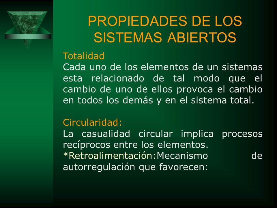 PROPIEDADES DE LOS SISTEMAS ABIERTOS