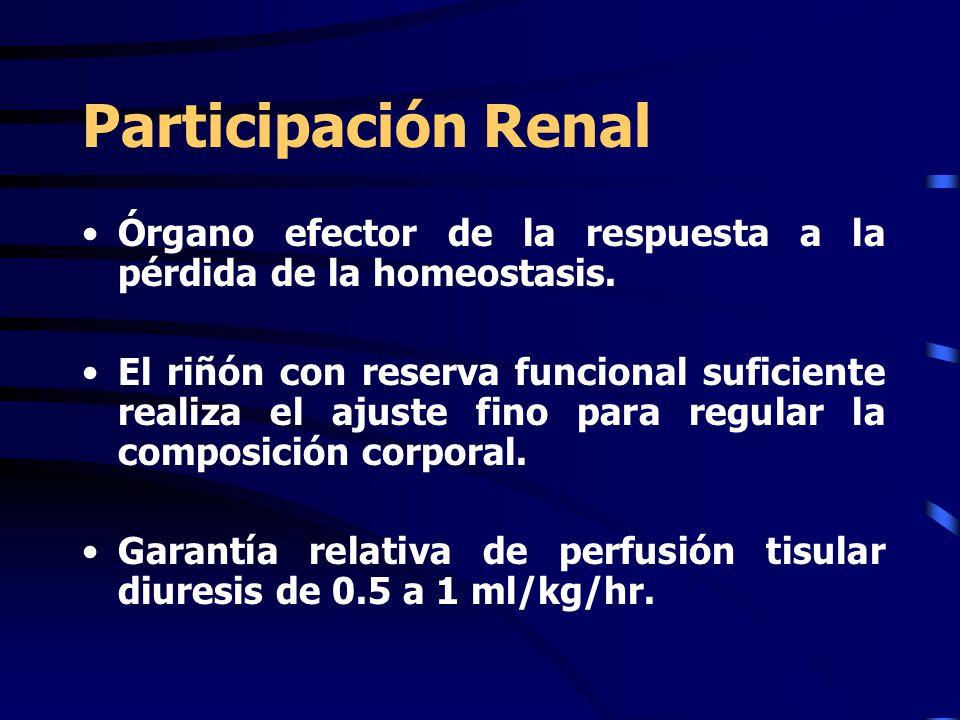 Participación Renal Órgano efector de la respuesta a la pérdida de la homeostasis.