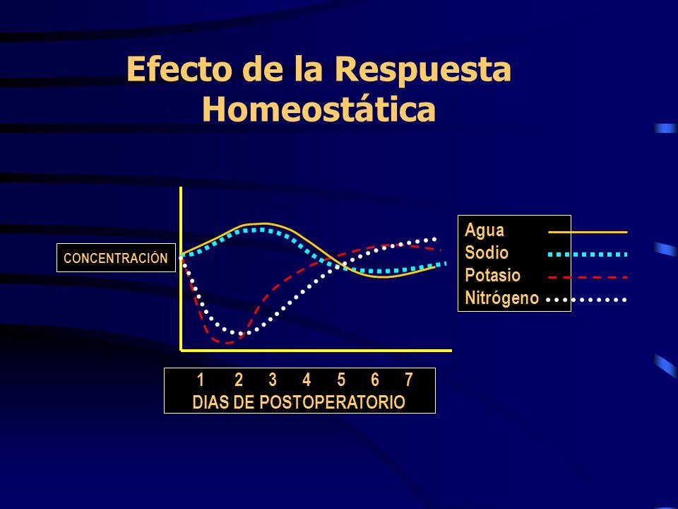 Efecto de la Respuesta Homeostática