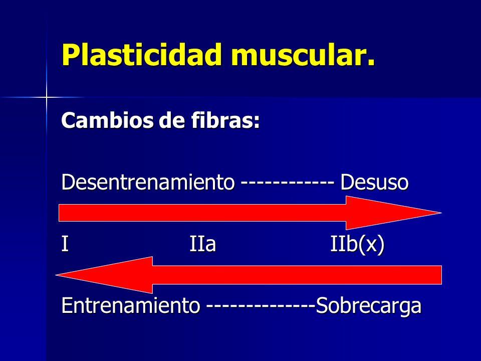 Plasticidad muscular. Cambios de fibras: