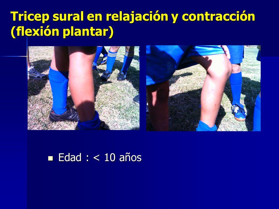 Tricep sural en relajación y contracción (flexión plantar)