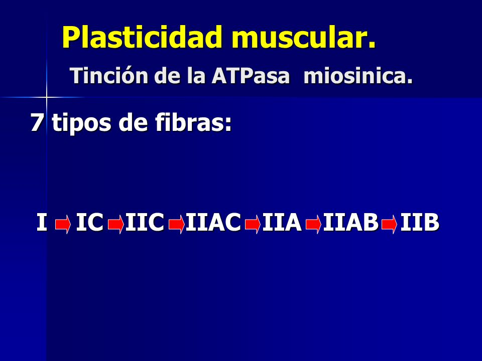 Plasticidad muscular. Tinción de la ATPasa miosinica.