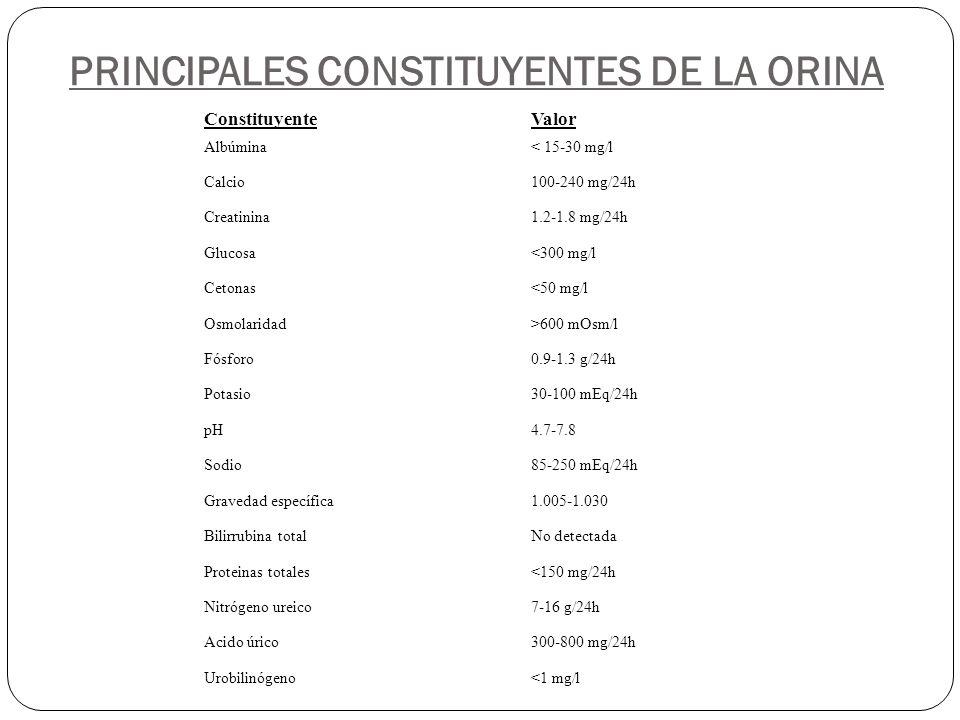 PRINCIPALES CONSTITUYENTES DE LA ORINA