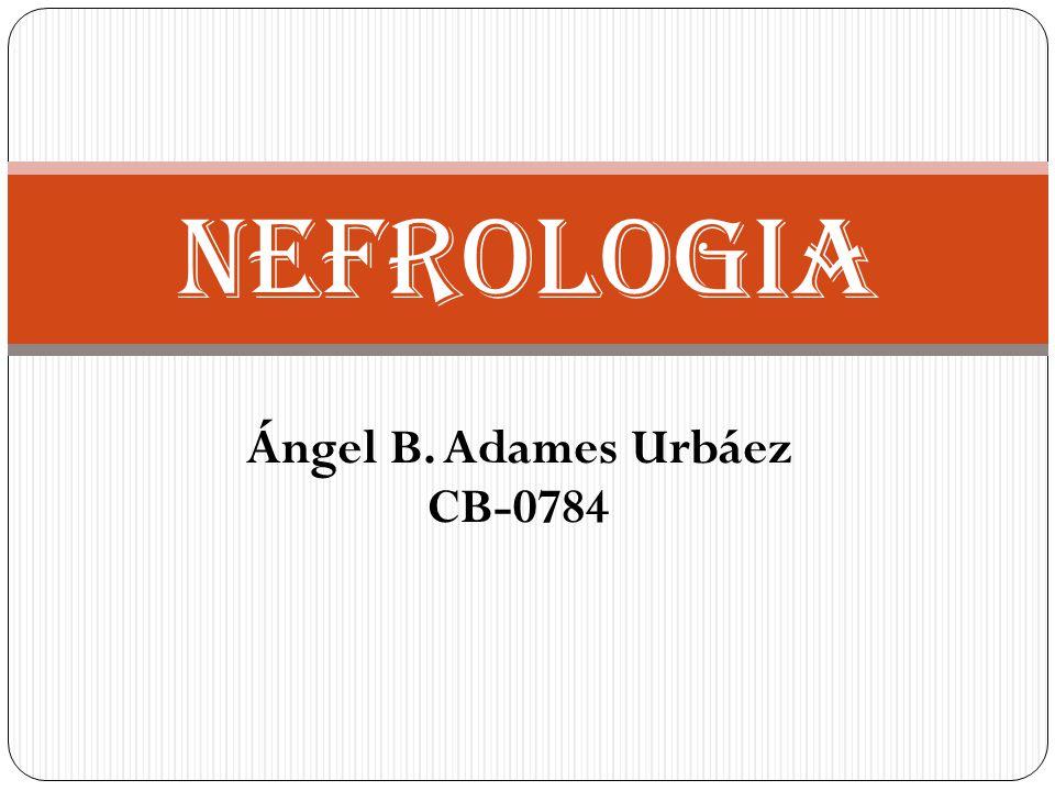 Ángel B. Adames Urbáez CB-0784