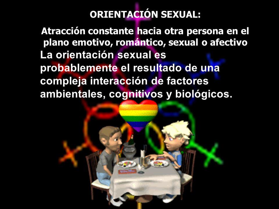 ORIENTACIÓN SEXUAL: Atracción constante hacia otra persona en el plano emotivo, romántico, sexual o afectivo.