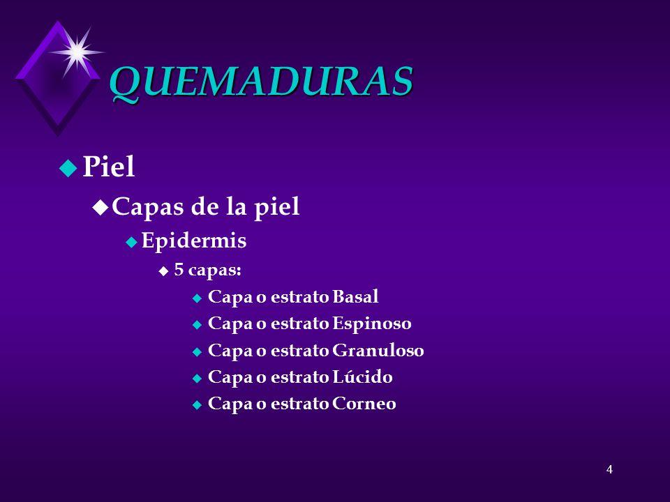 QUEMADURAS Piel Capas de la piel Epidermis 5 capas: