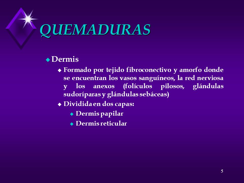 QUEMADURAS Dermis.