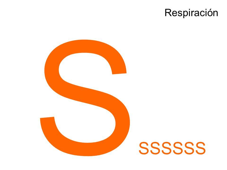Respiración SSSSSSS