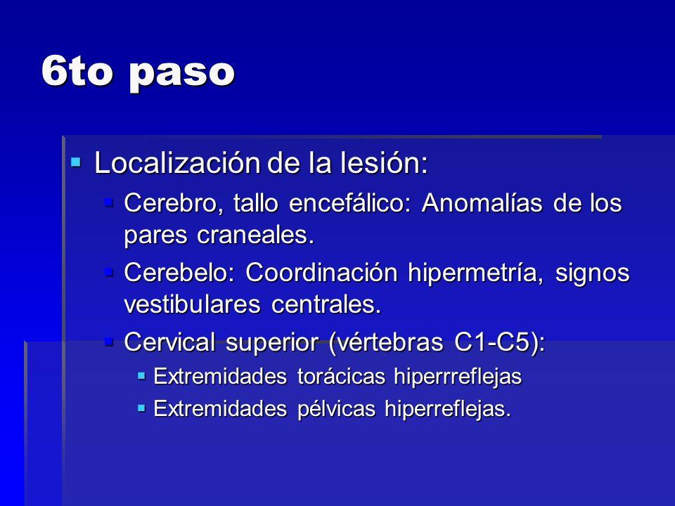 6to paso Localización de la lesión: