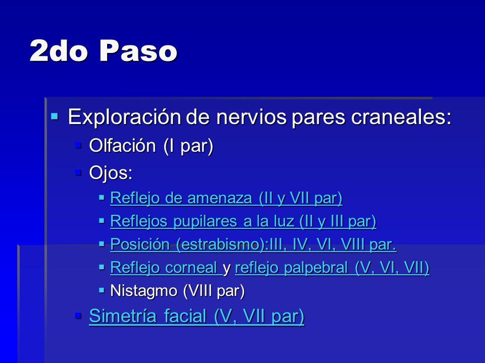 2do Paso Exploración de nervios pares craneales: Olfación (I par)