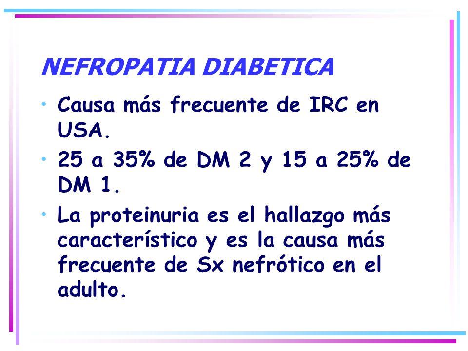 NEFROPATIA DIABETICA Causa más frecuente de IRC en USA.