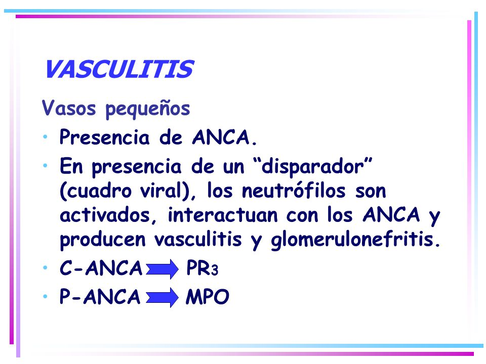 VASCULITIS Vasos pequeños Presencia de ANCA.