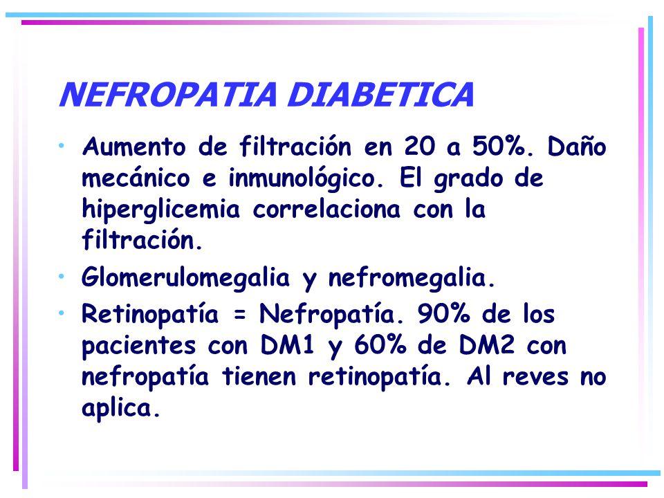 NEFROPATIA DIABETICA Aumento de filtración en 20 a 50%. Daño mecánico e inmunológico. El grado de hiperglicemia correlaciona con la filtración.