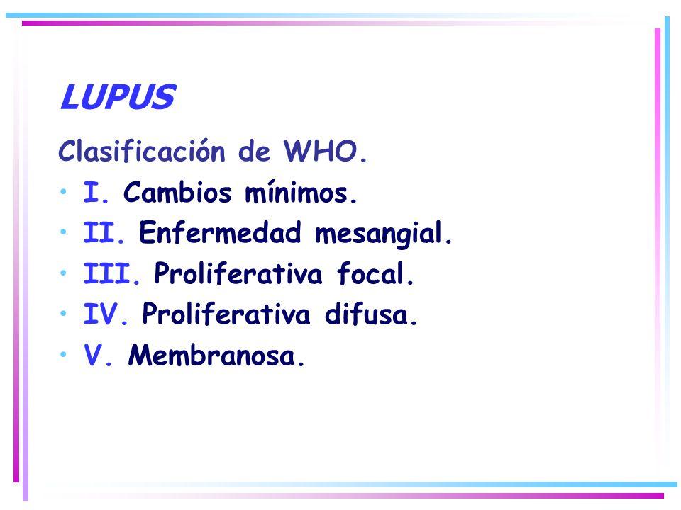 LUPUS Clasificación de WHO. I. Cambios mínimos.