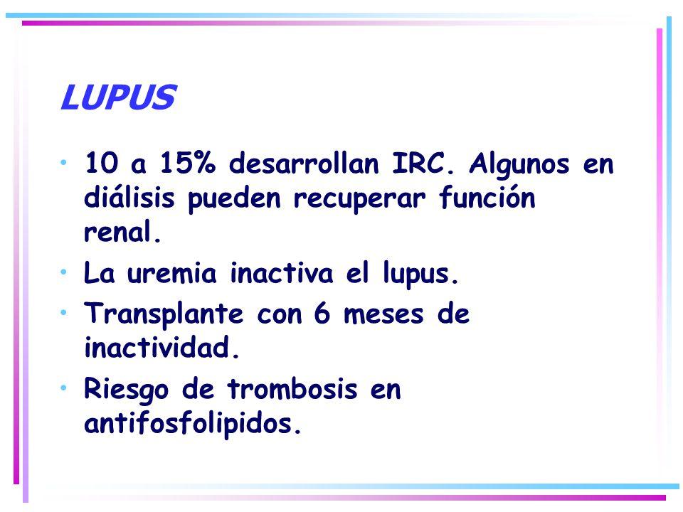 LUPUS 10 a 15% desarrollan IRC. Algunos en diálisis pueden recuperar función renal. La uremia inactiva el lupus.