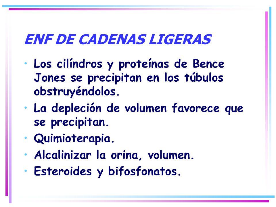 ENF DE CADENAS LIGERAS Los cilíndros y proteínas de Bence Jones se precipitan en los túbulos obstruyéndolos.