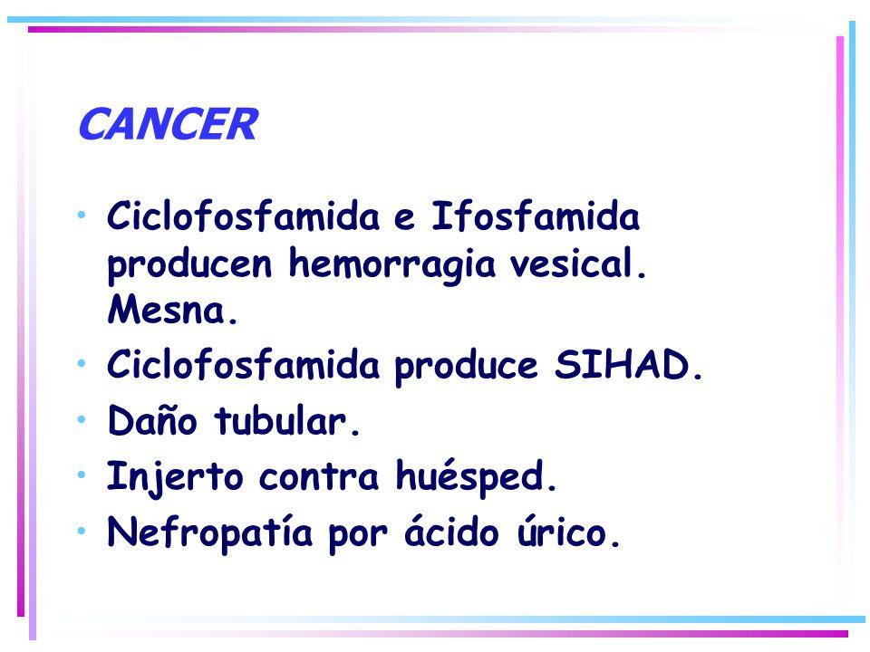 CANCER Ciclofosfamida e Ifosfamida producen hemorragia vesical. Mesna.