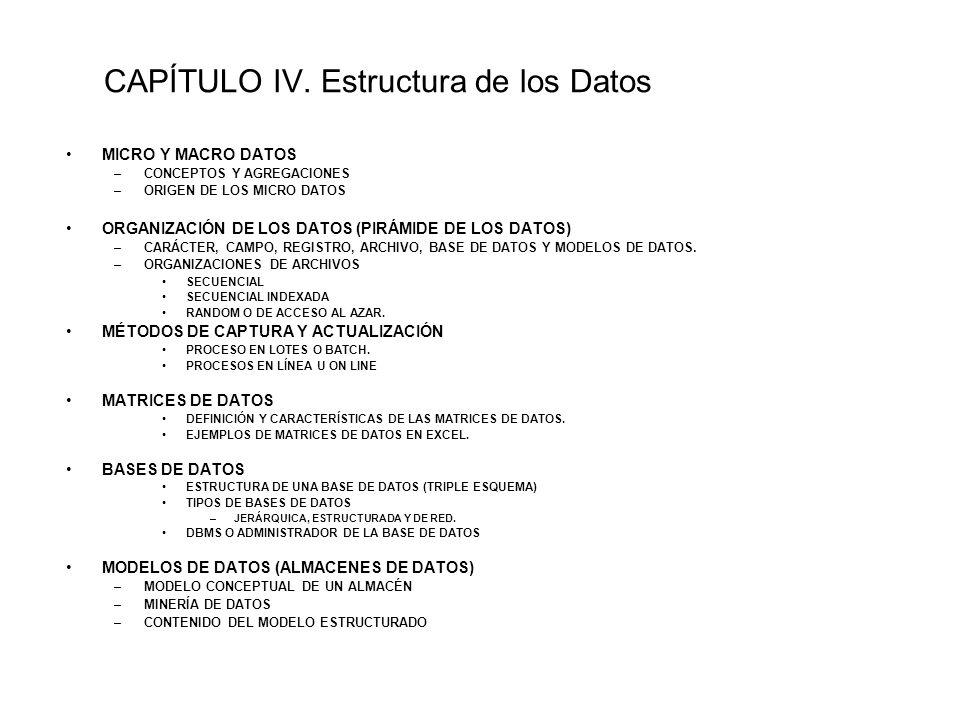 CAPÍTULO IV. Estructura de los Datos