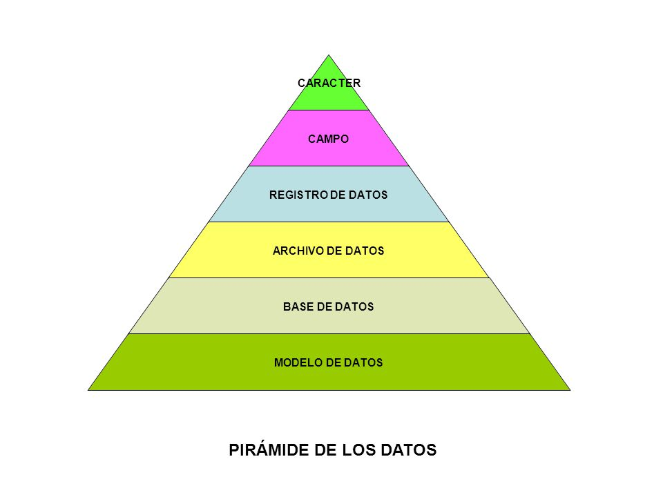 PIRÁMIDE DE LOS DATOS
