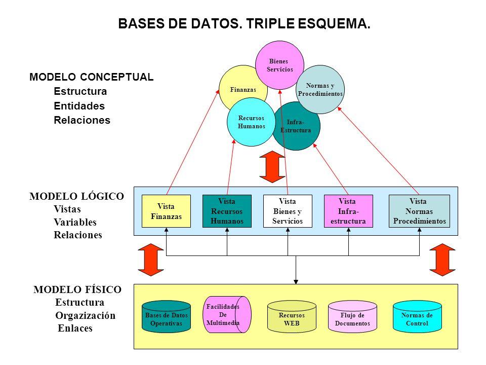 BASES DE DATOS. TRIPLE ESQUEMA.