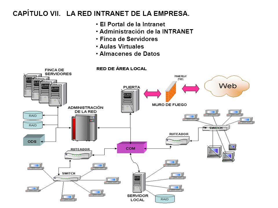 CAPÍTULO VII. LA RED INTRANET DE LA EMPRESA.