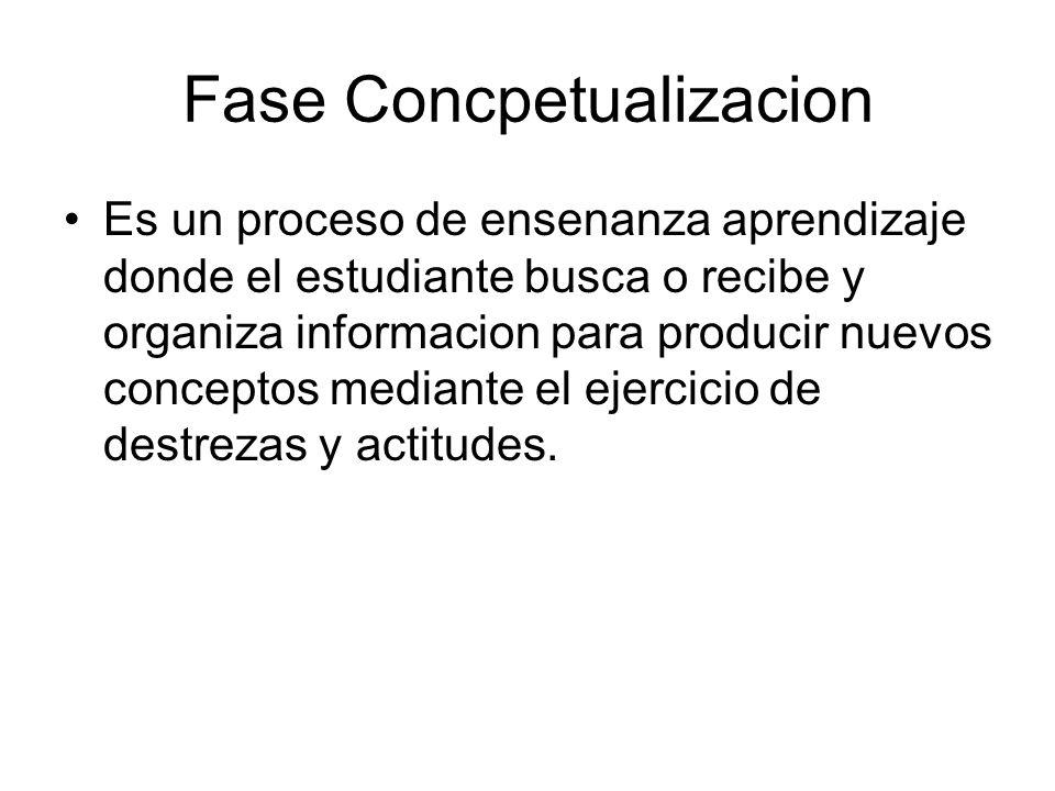 Fase Concpetualizacion
